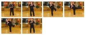Defensive Spin Kick Panel