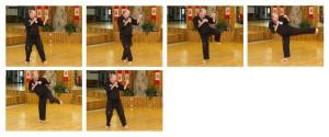 Step Across Spin Kick Panel